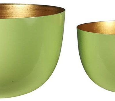 Douglas Collection Collection Green Dekoracja 1.0 pieces